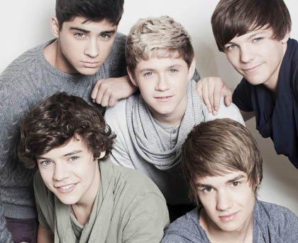 Fiction sur les célèbres One Direction