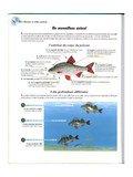 Fichier PDF cours initiation.pdf