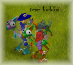 le blog de teambudokai