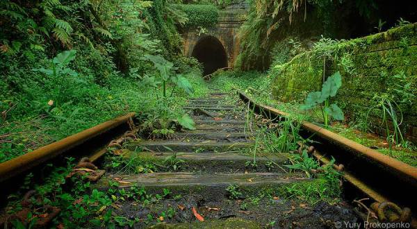 Abanoned Places Look Incredible Taken Over By Nature
