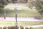 Webcam En Direct Live - École Extérieur - États-Unis - Chapel Hill