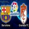 مشاهدة مباراة برشلونة وغرناطه بث مباشر اليوم 16-2-2013