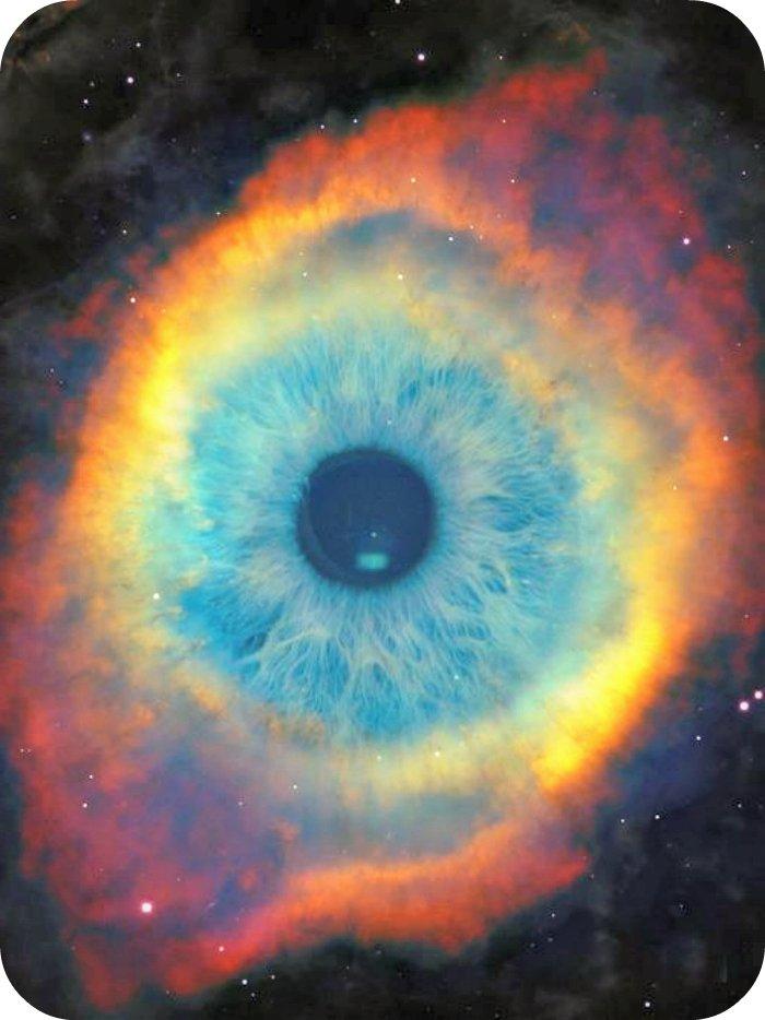 An Eye for an Eye will make the Whole World Blind. - Jan Jansen