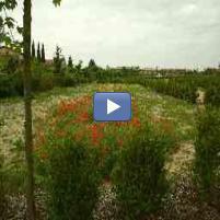 Diaporama Kizoa : Petite balade au jardin de la Maourine