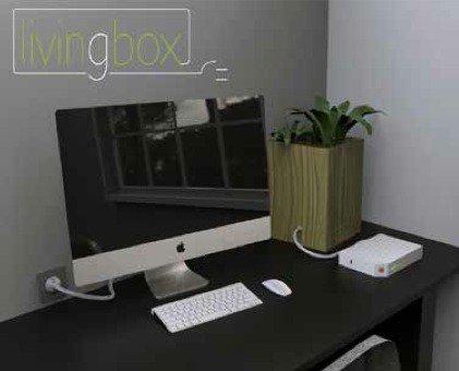 La plante verte qui alimente votre box Internet