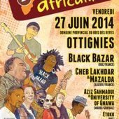 La Nuit Africaine au Bois des Rêves à Ottignies, ce 27 juin 2014
