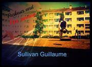 Sullivan Guillaume Parkour Free Running