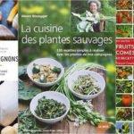 Salade de fleurs sauvages printanières à l'alsacienne - recette