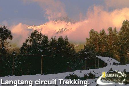 Langtang circuit trekking, langtang region trek, Helambu trek | Holidays adventure in Nepal, Trekking in Nepal, Himalayan Trekking operator agency in Nepal