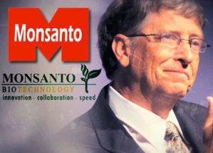 SPREAD THE TRUTH 777: Monsanto