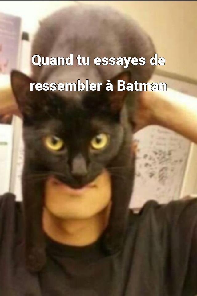 Quand tu essayes de ressembler à Batman
