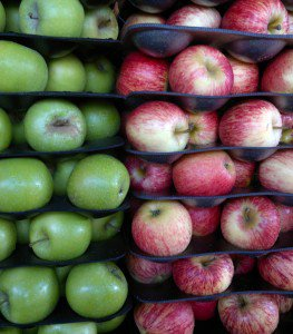 Bumper Apple Harvest – Conical Cone Bottom Tanks For Cider Production