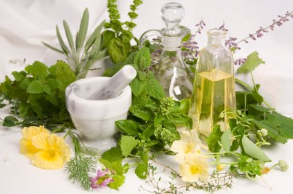 Top 6 Herbs And Their Health Benefits - Healthy Food Society