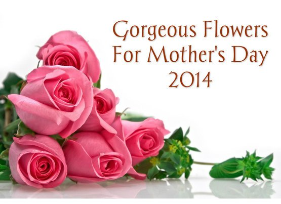 Gorgeous Flowers For Your Mom