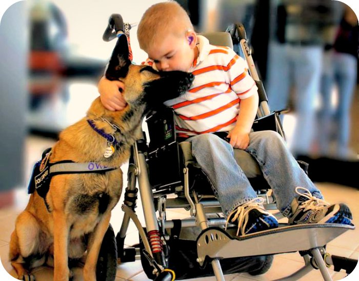 A Friend in Need is a Friend Indeed. - Daily Poetry and Stories Portal | Easy Branches