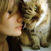 Les femmes interagissent mieux avec les chats qui le leurs rendent | PsychoMédia
