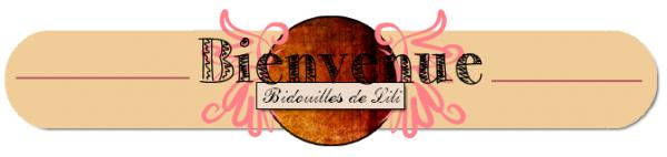 Blog de Bidouilles-de-lili