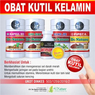 Pengobatan Herbal Kutil Kelamin - Denature