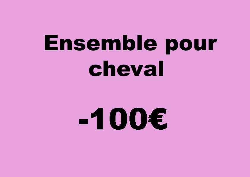 Ensemble cheval -100 euros