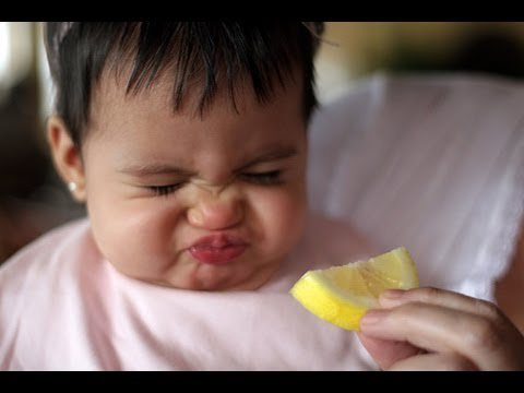 Babies Eating Lemons for First Time Compilation 2013  - Funny pictures Funny video Sexy Video