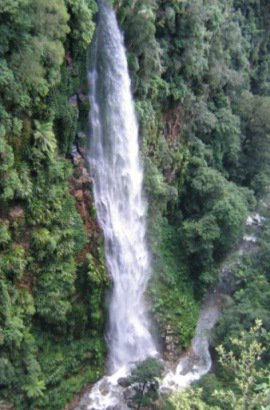 Lamington National Park - Nature, culture and history (Department of National Parks, Sport and Racing)