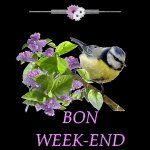 ***BON WEEK-END*** - Au Coeur De La Vie...