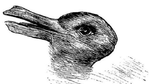 Voyez-vous un canard ou un lapin sur ce dessin?