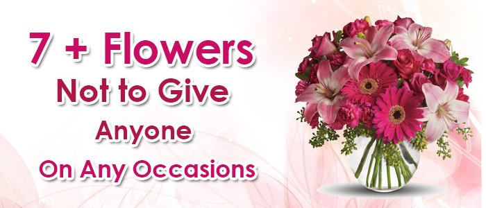 What Everyone Should Know About Giving Flowers