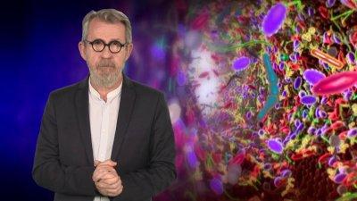 """Les pouvoirs extraordinaires du corps humain Le """"microbiote"""" intestinal : l'allié de notre système immunitaire !"""