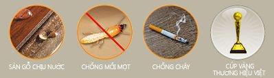 Các vấn đề có thể gặp phải của sàn gỗ tự nhiên và cách khắc phục.