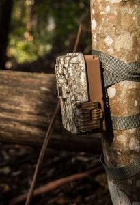 Best Game Camera Reviews 2017 - The Best Trail Camera Buyer's Guide