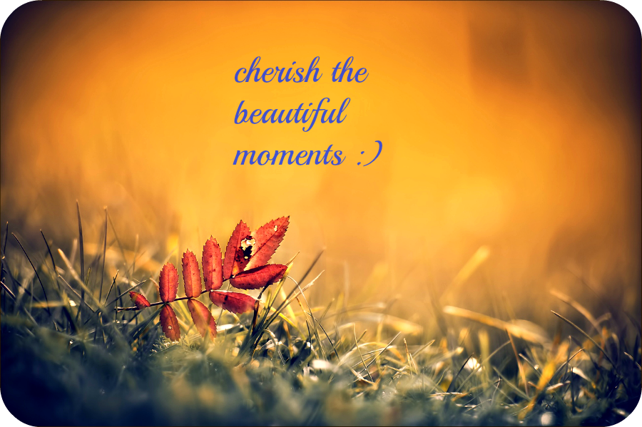 Good Memories are Sweet, Cherish It. - Daily Poetry and Stories Portal | Easy Branches