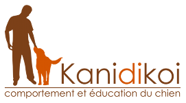 Sans domicile fixe mais toujours avec mon chien | Kanidikoi