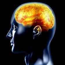 La croyance en Dieu modifierait une partie du cerveau