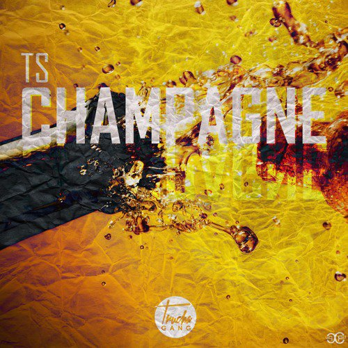 TS - Champagne ( Truchagang )