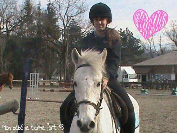 Le poneys de mes rêves ♥.