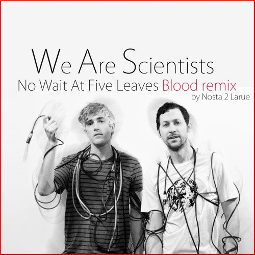 We Are Scientists No Wait At Five Leaves Blood Remix