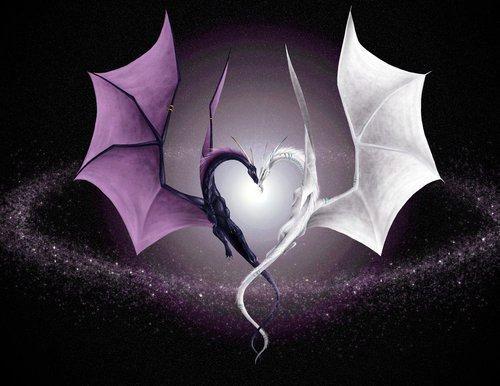 Dragons Violet et Blanc