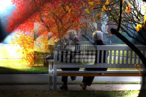 Das Rentendebakel und seine Ursachen