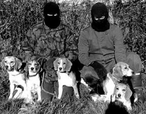 Ligue de combat contre les cruautés envers les animaux