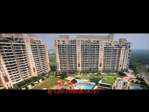 DLF Magnolias, Magnolias in Sector 42 Gurgaon, property in Sector 42 Gurgaon, DLF Group with subtitles | Amara