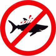 Protégeons les requins