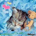 trop mimi - Blog de cajoline79