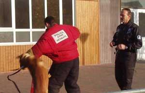 Le métier de maître-chien à la police