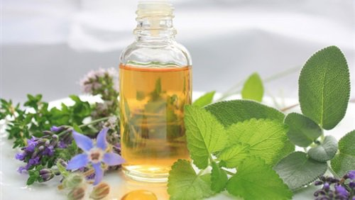 Scientists Discovered That This Essential Oil Potently Kills Lung And Breast Cancer Cells - Healthy Food Society