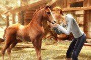 Top 10 des raisons évidentes de se réincarner en cheval, parce que c'est bien