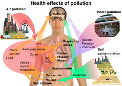 Top 45 diseases caused by pollution