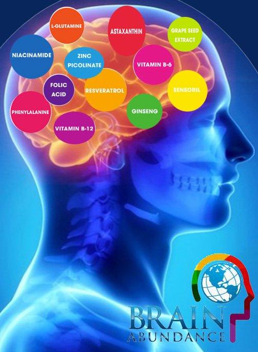 Brain Fuel Plus Reviews | Brain Fuel Plus Reviews