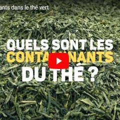 Thé vert: des contaminants d'origines diverses dans les sachets (UFC-Que Choisir)