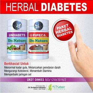 Obat Diabetes Herbal Produk Denature | Kizmantravel.net